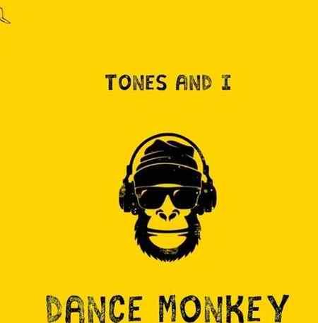 ntr دانلود آهنگ Dance Monkey