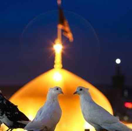 htr 3 دانلود مداحی یار دلم تویی کس و کار دلم محمد حسین پویانفر