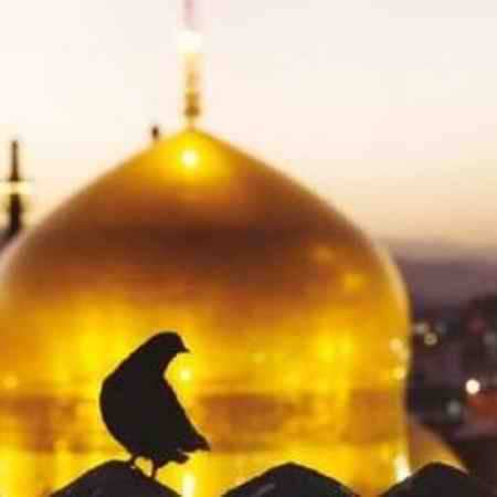 jtr 3 دانلود نوحه قربون کبوترای حرمت امام حسن