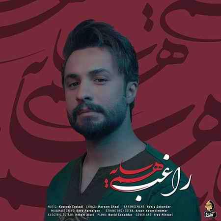 Ragheb Ham Sayeh دانلود آهنگ راغب همسایه
